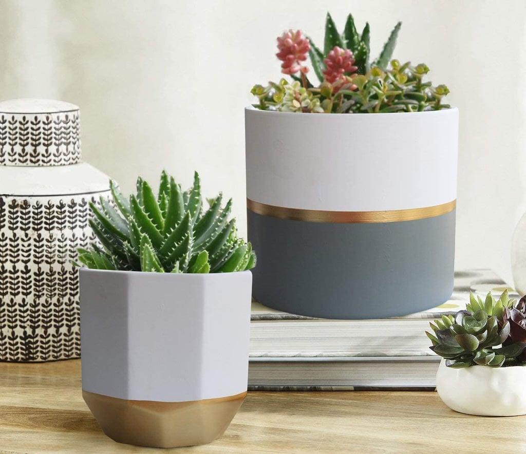 Best Indoor Pots And Planters Popsugar Home