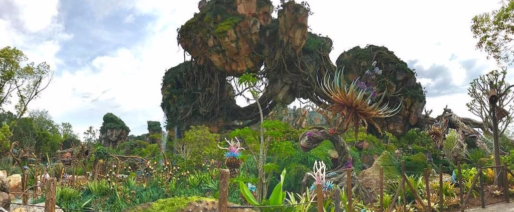 Get a Sneak Peek at Disney's Absolutely Epic World of Avatar