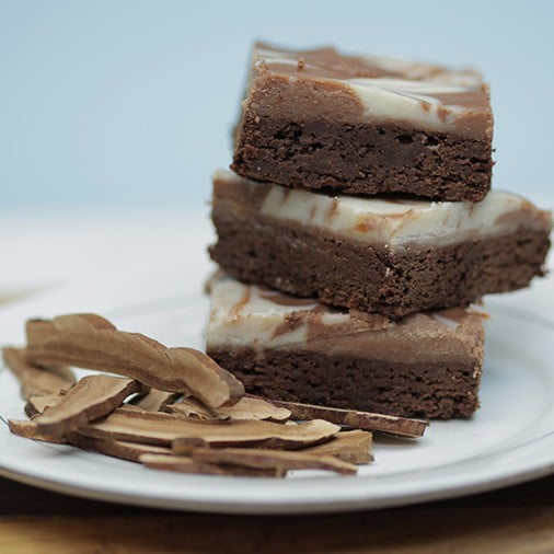Reishi Mushroom Brownies