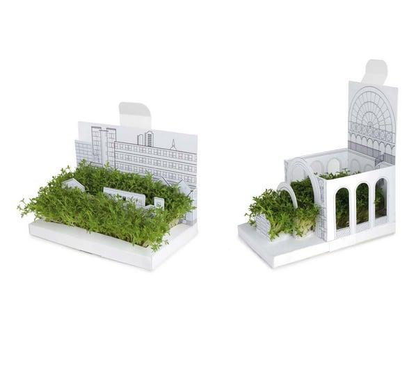 Mini Botanical Gardens