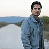 Who Does Michael Peña Play in Narcos Season 4?