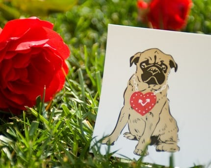 Valentine's Day Letterpressed Card Set  Pug Puppy by drenculture ($15 for 5)