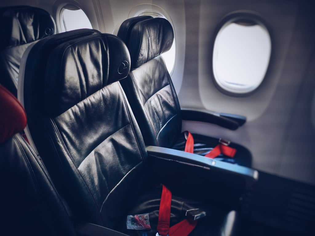 The Seatbelt Buckle