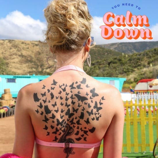 """Taylor Swift """"You Need to Calm Down"""" Song"""