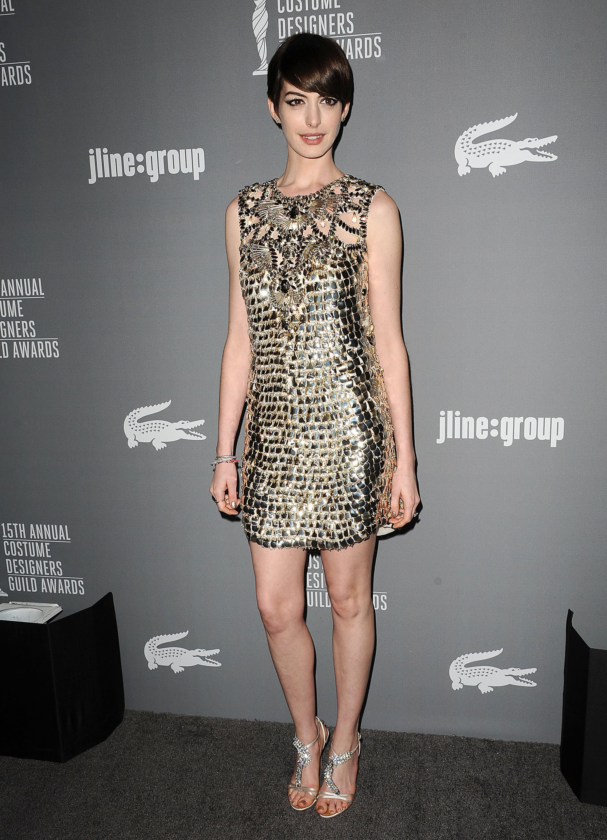 Anne Hathaway wore Gucci at the Costume Designers Guild Awards in Los Angeles.