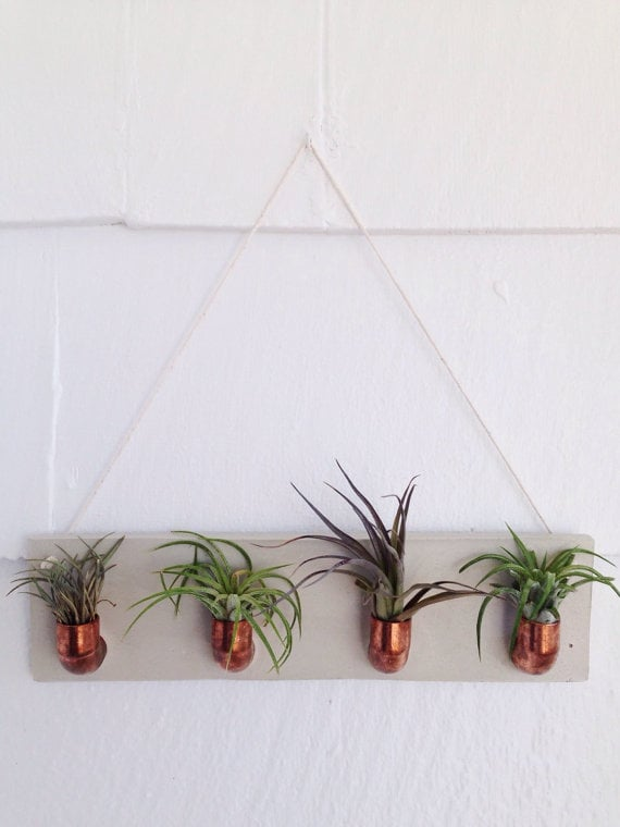Copper and Cement Air Plant Holder