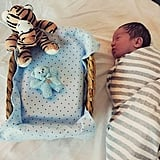 """Cherie explained that the following four months were surreal. She had to watch as Tiger grew and Johnny's body deteriorated.  """"I had to slowly watch my son break down,"""" said Cherie. """"First, his little eyes, nose, and beautiful lips became harder to see. Then his tiny fingers and tiny toes started to look like they were fusing together. Finally, it got to the point where he lost all of his features. It was torture."""""""