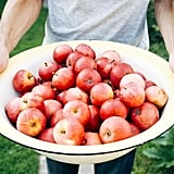 Libra (Sept. 23-Oct. 22): Apple Picking