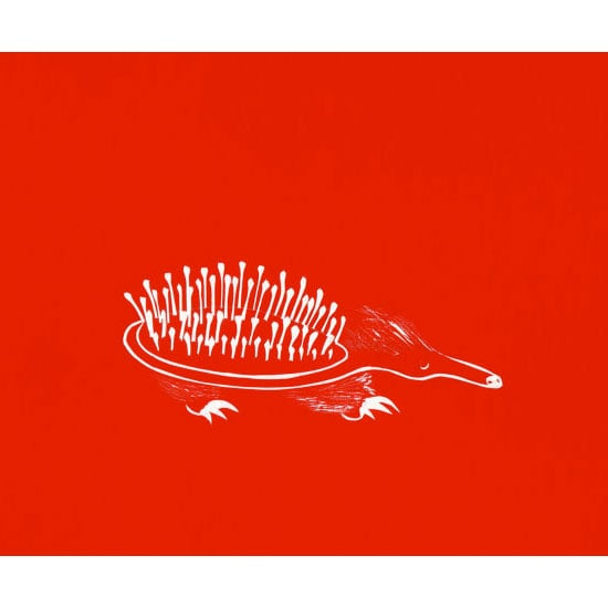 Australian artist Ellé Kate Misios created this echidna brush print to explore the idea of transformation. Hang it on a wall and see how its bold red hue transforms a room.