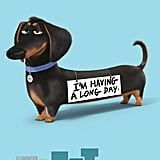 The Secret Life of Pets Character Posters