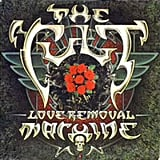 """Love Removal Machine,"" The Cult"