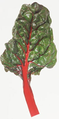 Swiss Chard Fills the Holes in Your Diet