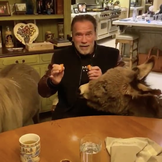 Arnold Schwarzenegger Self-Isolation Video With Pets