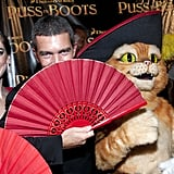 Antonio Banderas at the SF premiere of Puss in Boots.