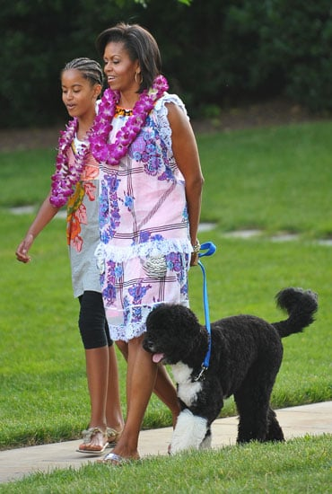 Bo Hits a South Lawn Luau . . . But Needs This