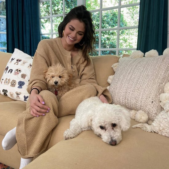 Selena Gomez Wears Free People Sweater Set With Her Dogs