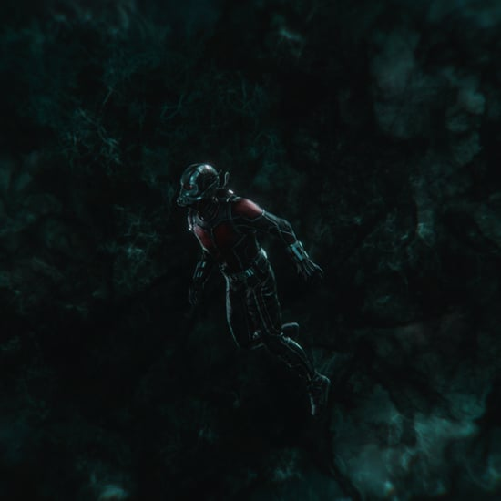 Avengers: Endgame Theory About Ant-Man Defeating Thanos