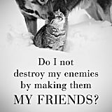 Befriend Your Enemies
