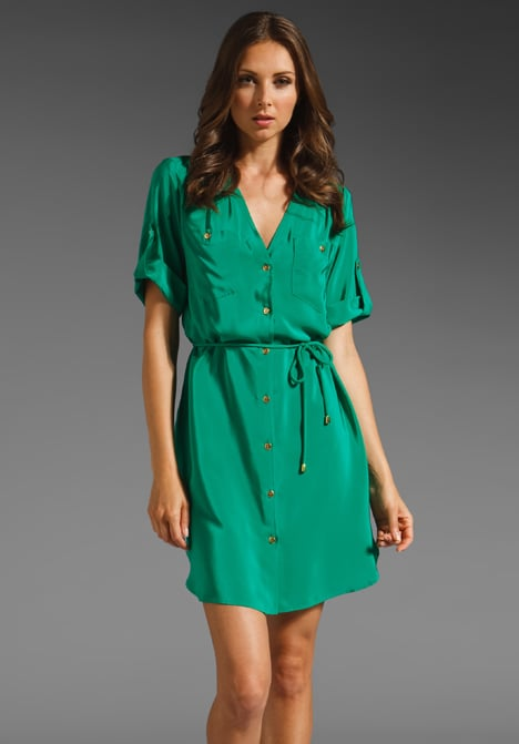 The cinched waist on this silky shirtdress will flatter your figure, not to mention how its easy shape lends itself just as well to casual flats as it does to heels.  Amanda Uprichard Pocket Dress ($206)