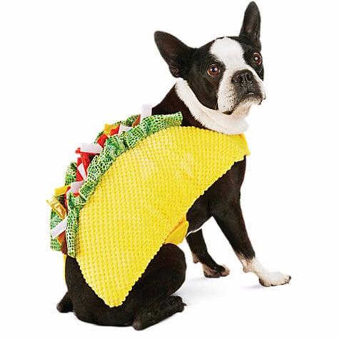 Taco Halloween Dog Costume |Taco Dog Halloween Costume Pattern