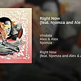 """Right Now"" by Vindata Feat. Njomza and Alex & Alex"