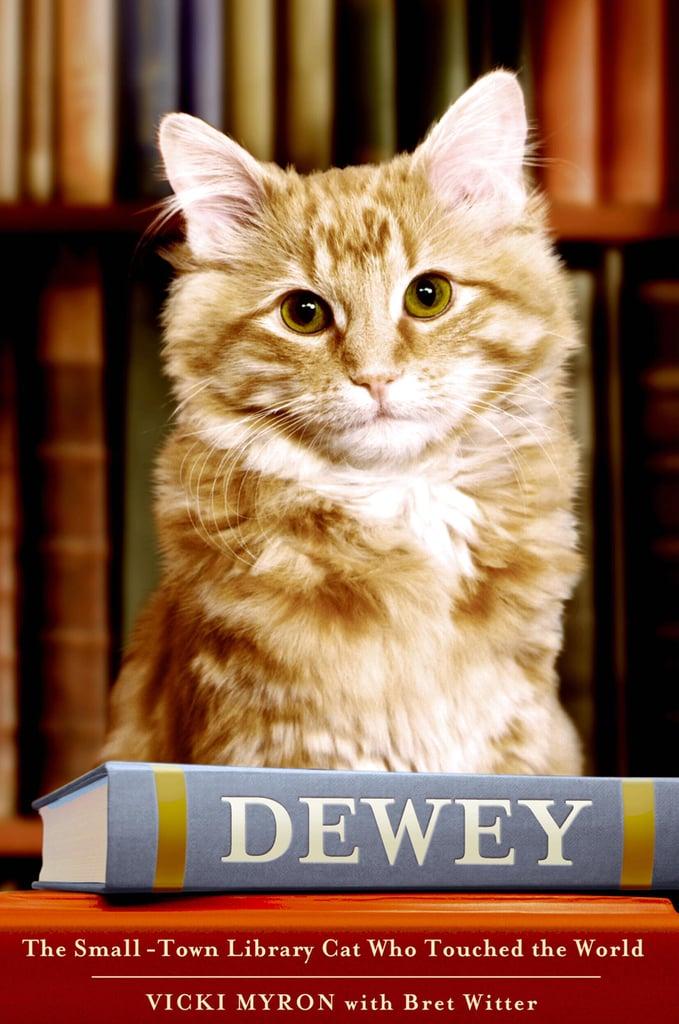 Dewey by Vicki Myron