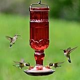 Perky-Pet Red Antique Bottle Decorative Glass Hummingbird Feeder