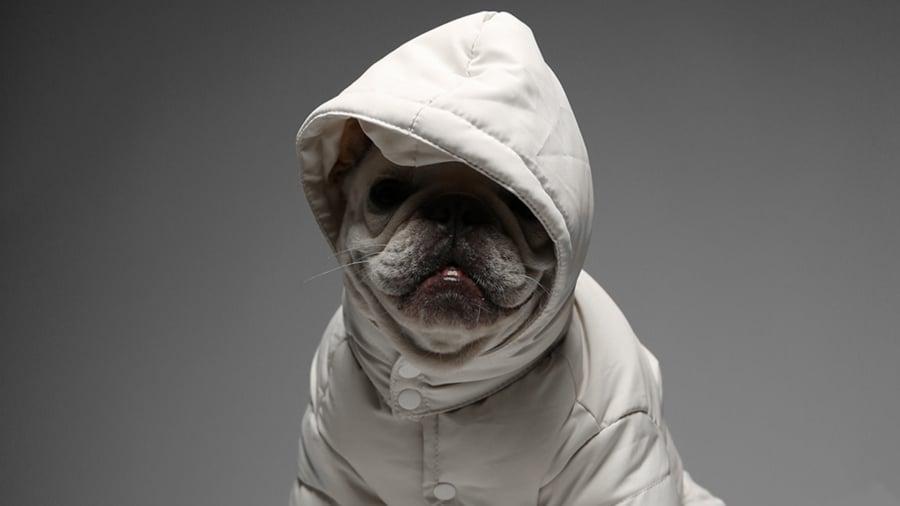 Max-Bone Aspen Coat
