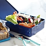 Spencer Bento Box Container