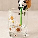 Chuppon Panda Self Watering Basil Planter