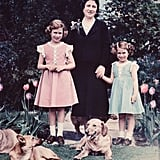 4: Number of children she has; Prince Charles of Wales; Anne, Princess Royal; Prince Edward, Earl of Wessex; and Prince Andrew, Duke of York.  4: Number of working beehives at Buckingham Palace.  4: Number of dogs she currently has — 2 corgis named Willow and Holly, and two 'dorgis' (a dachshund/corgi mix) called Candy and Vulcan.  5'4: Her height in feet and inches.  6: Her shoe size.  7: The number of both archbishops and popes who have been appointed since she first took power on Feb. 6, 1952.  8: Number of grandchildren she has; Peter Mark Andrew Phillips, Zara Anne Elizabeth Phillips, Prince William of Wales, Prince Henry of Wales, Princess Beatrice of York, Princess Eugenie of York, Lady Louise Windsor, and James, Viscount Severn.  8: Number of carriages in the royal train.