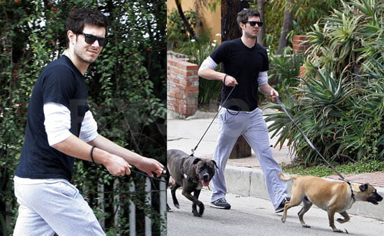 Adam Brody Doubles Up on Doggies