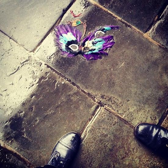Mardi Gras 2014 Instagram Pictures