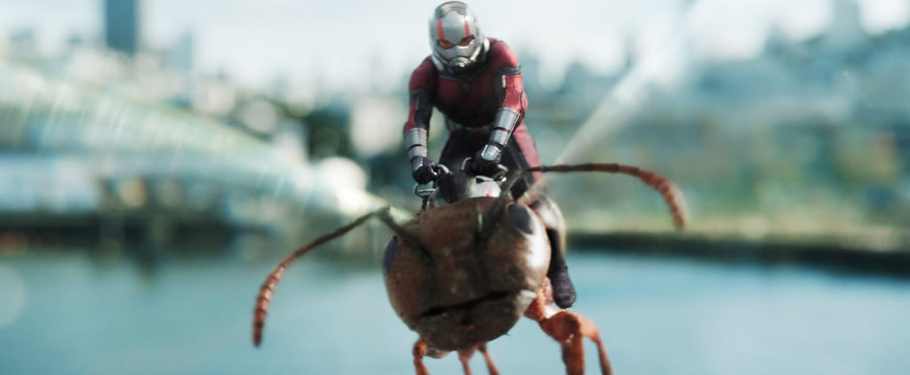 Will There Be an Ant-Man 3?