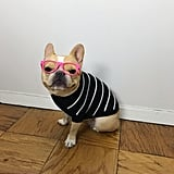 Ruby Rufus Raised Striped Sweater