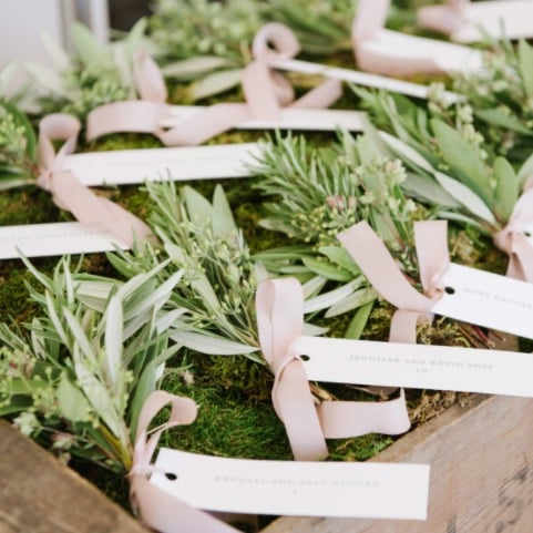 Give guests their own plants to take home as a wedding favor.