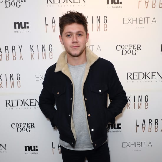 Niall Horan With Brown Hair January 2017