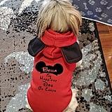 Mickey Ears Dog Hoodie