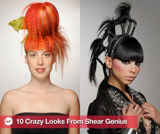 Pictures From Season 3 of Shear Genius