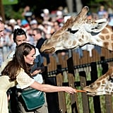 In April 2014, Kate and William fed the giraffes at Taronga Zoo in Sydney, Australia.