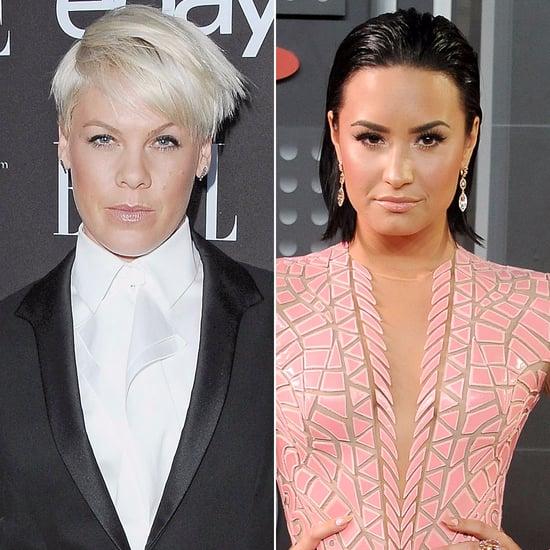 Pink and Demi Lovato VMAs Feud