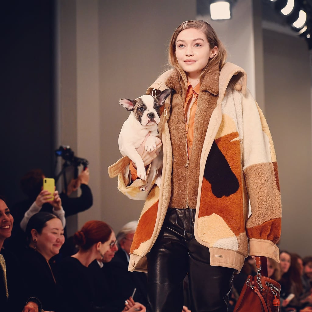 Gigi Hadid Just Carried a Puppy Down the Runway, and We're in Love