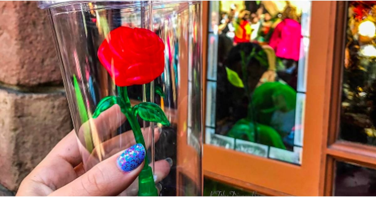 Disneyland Beauty And The Beast Rose Cup Popsugar