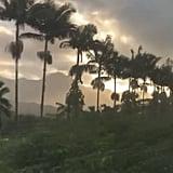 Billie Eilish on Holiday in Hawaii | January 2020