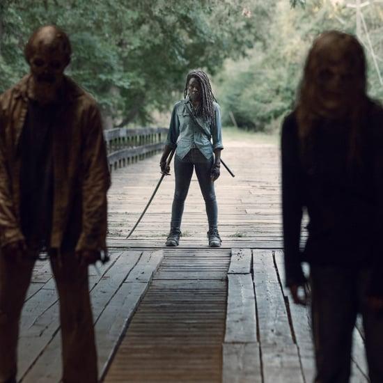 When Is The Walking Dead Midseason 9 Premiere?