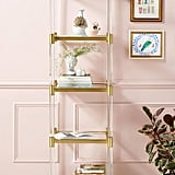 Oscarine Narrow Lucite Mirrored Bookshelf