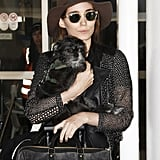 Rooney Mara touched down at LAX airport with her dog on Friday.