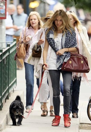 Sienna walks her dog