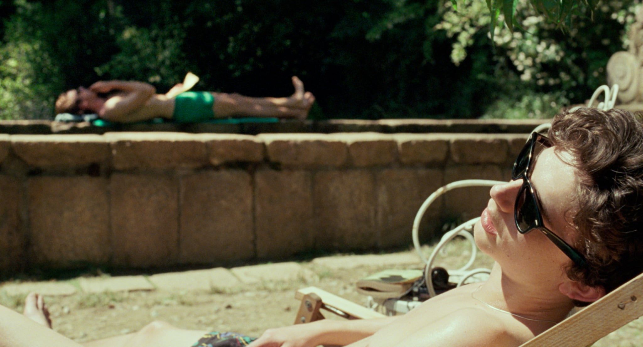 Oliver's Swimsuit Detail in Call Me by Your Name ...