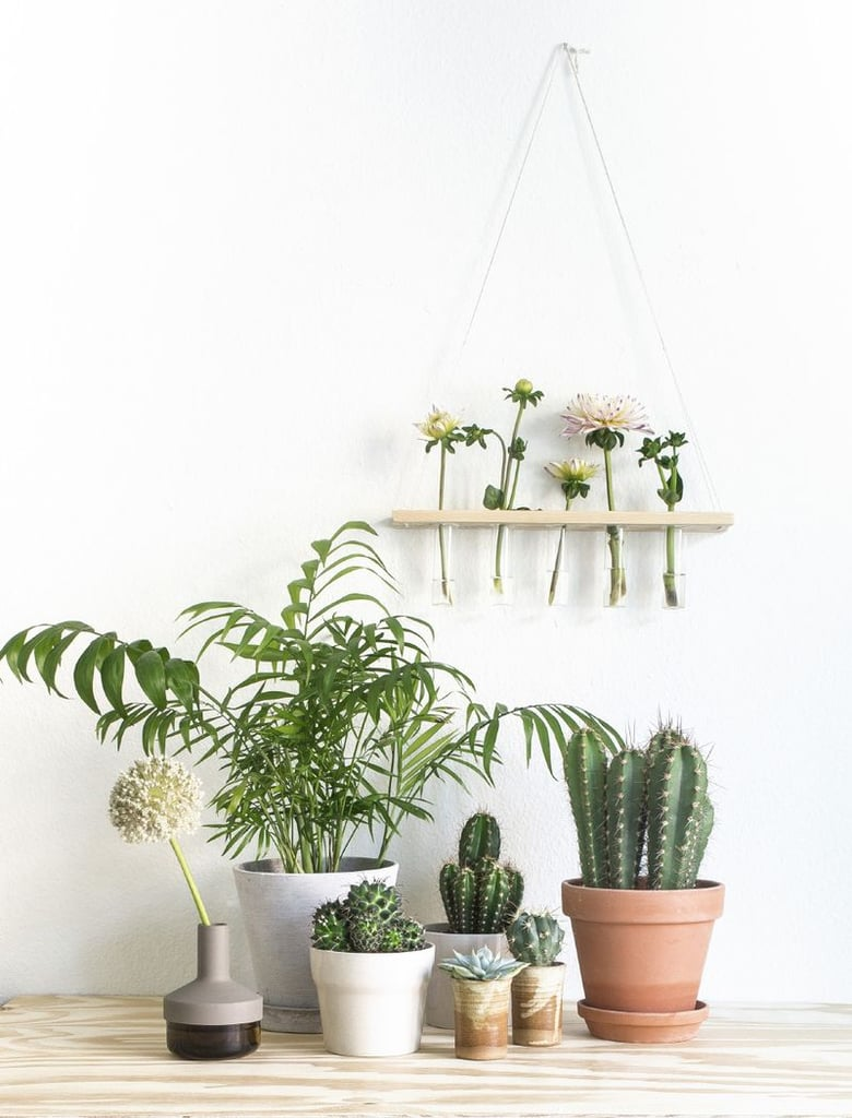 Thou Shalt Make The Most Of Plants Decorating Ideas For